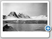 Glacier face on east side of Scotia Bay, South Orkneys (1937)